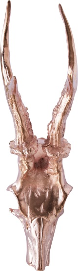Oh my deer - Skull head Bronze